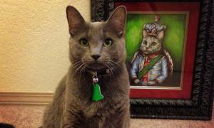 Hình vẽ chân dung các 'bạn mèo' đáng yêu không thể tả