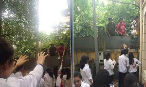 Ném đồ ăn sáng như 'cứu trợ nhân đạo' tại trường cấp 3 ở Hà Nội