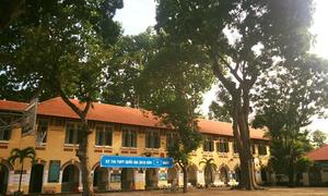 7 trường THPT Sài thành rợp bóng cây xanh