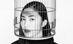 Helly Tống, Quang Đại bị 'nhốt' trong lồng