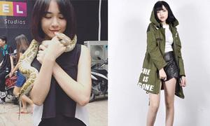 Sao Việt 22/10: Hòa Minzy vô tư chơi với rắn, Mờ Naive kéo chân dài ngất