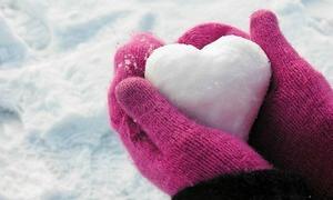 Trắc nghiệm: 'Tuyết nhiệt đới' bật mí về con người bạn