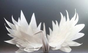Những tác phẩm hạc giấy đẹp mê mẩn