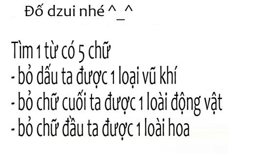 do-vui-tim-chu-meo-lo-ngo-giua-bai-dat-hoang-2