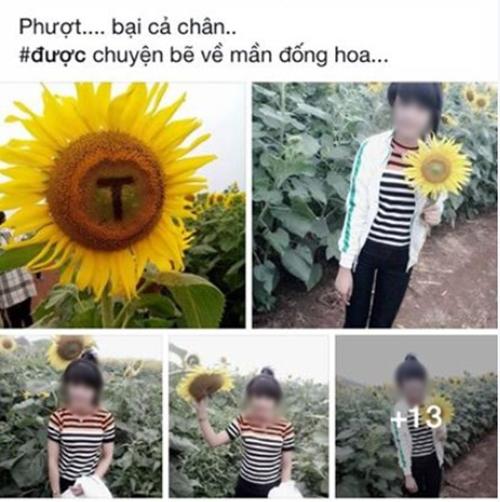 hinh-anh-pha-hoai-dong-hoa-duong-duong-nghe-an-bi-chi-trich-5