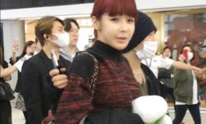 Park Bom được Tae Yang bảo vệ như vệ sĩ ở sân bay