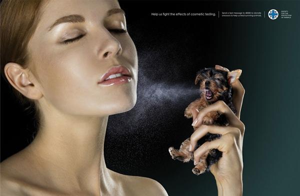 Không ít chai nước hoa bạn đang dùng được thí nghiệm một cách tàn nhẫn trên cơ thể động vật.