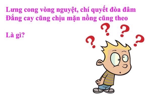 do-vui-toa-nha-nao-xuat-hien-truoc-1