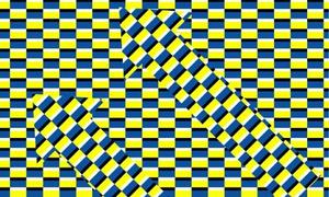 Đố vui: Bạn thấy gì trong ma trận này?