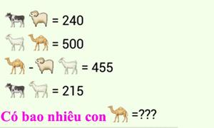 Đố vui: Có bao nhiêu con lạc đà trong bài toán?
