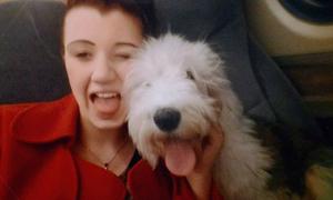 Chàng trai dìm chết thú cưng vì bạn gái yêu chiều chó hơn mình