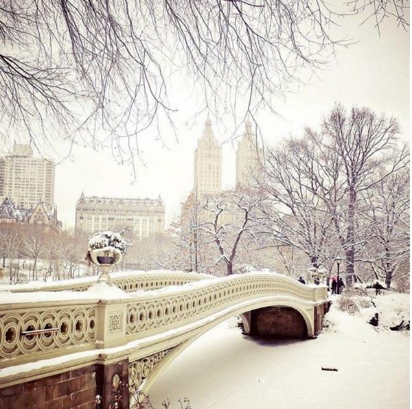 Cây cầu Bow Bridge nổi tiếng ở Central Park như được bước ra từ một câu chuyện cổ tích, theo ví von của tác giả.