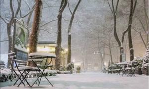 New York đẹp như cổ tích trong cơn bão tuyết lịch sử