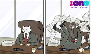 Tranh vui: Trưởng phòng mèo thăng chức ký