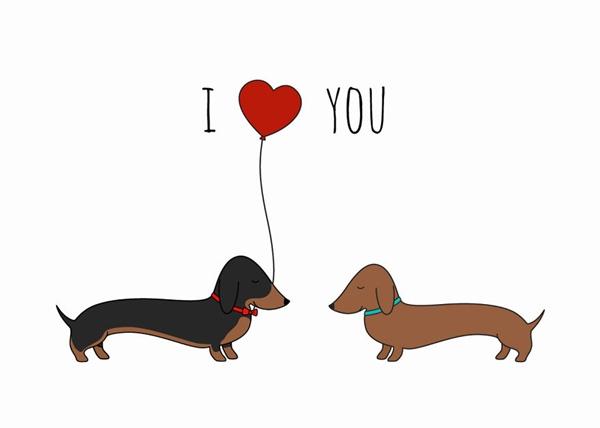 Đôi cún cũng biết cách tình cảm nồng ấm trong ngày lễ Tình yêu.