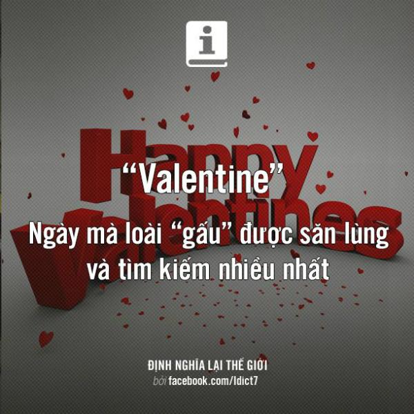cuoi-te-ghe-12-2-len-ke-hoach-chia-tay-gau-ngay-valentine-2-3