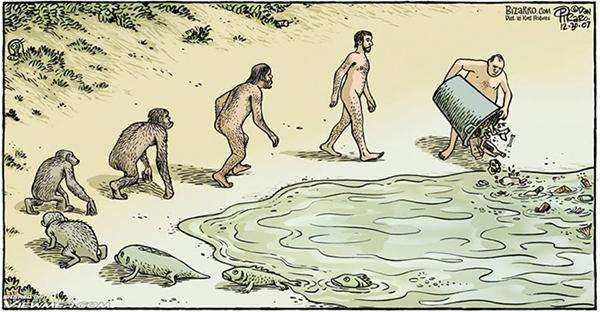 Sau khi tiến hóa từ