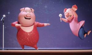 Sing - phim hoạt hình siêu dễ thương của ê kíp Minions