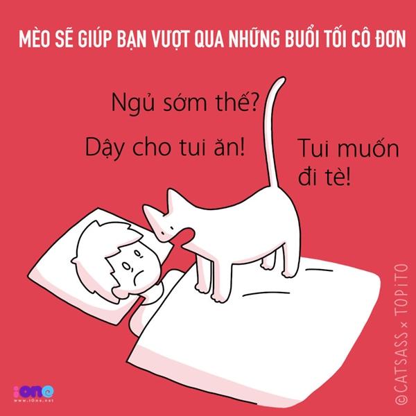 Với bản tính thích quấy rầy của lũ mèo nặc nô, bạn sẽ không còn những đêm yên tĩnh để đối diện với nỗi buồn, mà thay vào đó là phải thức dậy để hầu hạ phục tùng chúng.