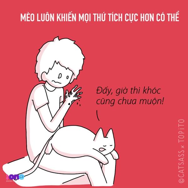 Mèo sẽ khiến bạn dở khóc dở cười và nhận ra có những nỗi buồn chẳng đáng quan tâm tẹo nào!