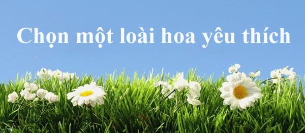 loai-hoa-yeu-thich-tiet-lo-phm-chat-dang-quy-o-ban