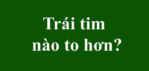 ban-phan-biet-kich-thuoc-hinh-gioi-den-dau-18