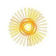 hoa-tiet-spirographtiet-lo-phong-cach-di-du-lich-cua-ban-7