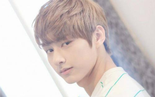 nhung-idol-khong-phai-nguoi-han-van-tao-con-sot-tai-kpop-7