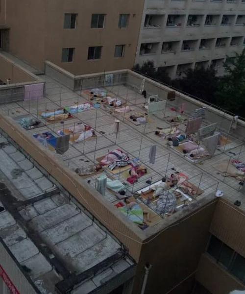 Cũng tại tỉnh Hà Nam, Trung Quốc, nhiều nam sinh Học viện khoa học kỹ thuật   Lạc Dương rủ nhau ra ngoài hành lang, lên tầng thượng ký túc xá hay khu nhà học   nằm ngủ vì quá nóng.