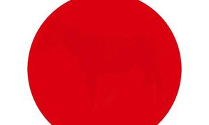 80% người không đủ tinh để nhìn thấy các chi tiết bên trong hình tròn màu đỏ