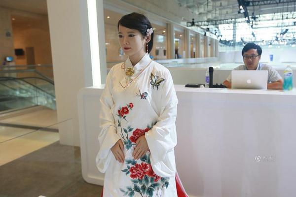 Cô gái robot được đặt tên Giai Giai (Jia Jia), do trường Đại học Khoa học kỹ   thuật Trung Quốc chế tạo, là robot đầu tiên của Trung Quốc có trải nghiệm   tương tác.
