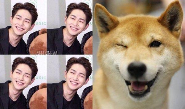 7-idol-nam-kpop-so-huu-mat-cun-sieu-dang-yeu
