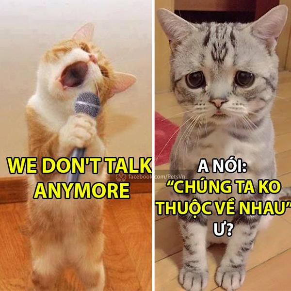 chung-ta-khong-talk-anymore-cau-che-hot-nhat-nho-son-tung-6