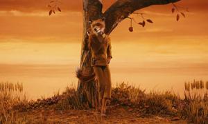 10 bộ phim tuyệt đẹp sinh ra để xem vào mùa thu