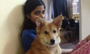 Phải chọn giữa chó cưng và bạn trai, cô gái chọn chó