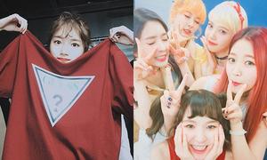 Sao Hàn 23/9: Suzy nhí nhố 'bơi' trong áo, Red Velvet đọ vẻ đáng yêu
