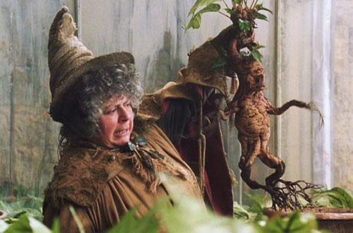 ban-co-nho-ten-giao-su-truong-hogwarts-trong-harry-potter-3