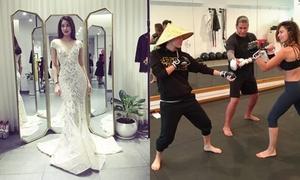Sao Việt 24/9: Phạm Hương đẹp nhất với váy đuôi cá, Ngô Thanh Vân tung chưởng ở Mỹ