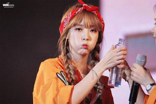 10-idol-kpop-de-thuong-giong-het-chuot-hamster-7