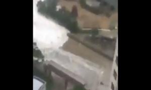 Siêu bão Chaba cuồn cuộn như sóng thần tấn công Busan