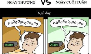 Sự khác biệt giữa ngày thường và cuối tuần