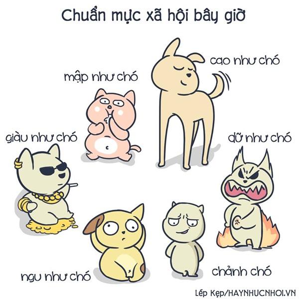 cuoi-te-ghe-5-11-vi-sao-con-gai-luon-chai-chuot-con-con-trai-thi-khong-4
