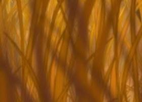 tim-manh-ghep-con-thieu-trong-phim-hoat-hinh-disney-16