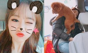 Sao Hàn 20/11: Seol Hyun bị cún cưng 'đè đầu cưỡi cổ', Ji Yeon cute bất ngờ