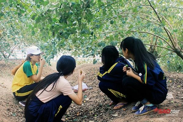 ban-chi-mat-10-nghin-dong-de-so-huu-ca-vuon-tao-an-thoa-thich-6