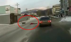 Cô gái bị chó lôi xềnh xệch qua đường, suýt bị ôtô đụng
