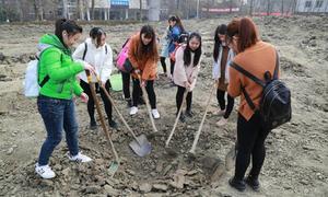 Sinh viên Trung Quốc phải cuốc đất trồng rau mới được tốt nghiệp