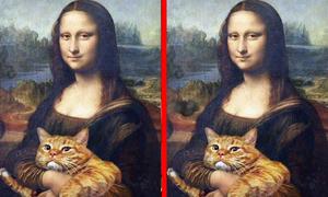 Tìm điểm khác biệt duy nhất trong bức tranh (3)