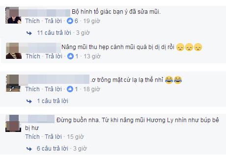 huong-ly-next-top-bi-nghi-nhan-mi-mat-nang-mui-2