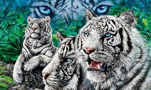 Đố bạn tìm đủ 10 con hổ